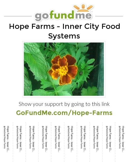Hope-Farms1773jpg